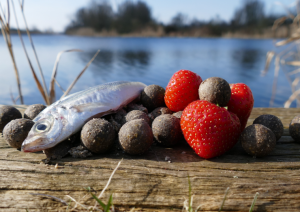 scale-baits-strawberry-fish